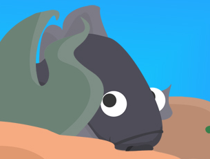 Photoshop, Illustrator, Flash. Evolver, initially called Seavolver is flash game prototype, initially made in 4 days during an intensive week at Supinfogame. It has been sold to Big Fish Games and is available on their website in a 3D version, the character design has been kept by the developer 3Dduo.